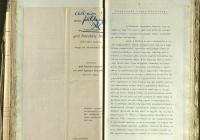 17. Apponyi Franciska a Tanácsadó Irodáról