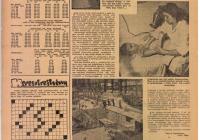 Tanácsok Lapja, 1961. február 9. 3. o.
